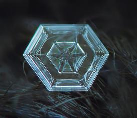 Auf dieser Aufnahme ist sehr gut die sechseckige Grundstruktur der Eiskristalle zu erkennen. Die räumliche Anordnung der Atome im Wassermolekül lässt nur ein hexagonales Kristallgitter zu.