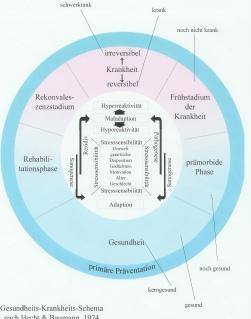 Krankheitsschema