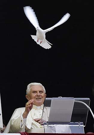 POPE Taube +